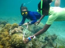 measuring-reef-c-earthwatch2