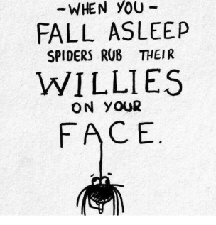 you-when-fall-asleep-spiders-rub-their-willie-s-on-1694151